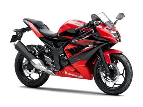 ninja-rr-mono-2015-red