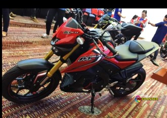 mt 15 RED 2