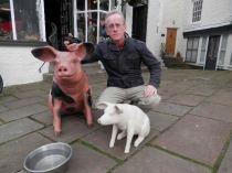 Pig based work