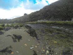 Cove at Stradbally