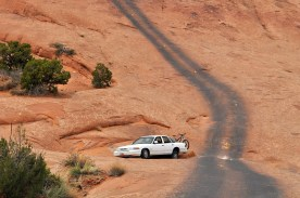 1997 Crown Victoria Hells Moab Baby Lions Back