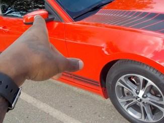 Mustang Custom Decal Vinyl