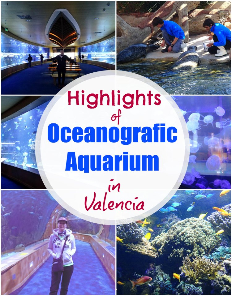 Photos, highlights and tips for visiting the Oceanografic aquarium in Valencia where you will find whales, dolphins, walruses, penguins, tropical fish, sea horses and a whole lot more underwater life to marvel at.  #Valencia #Oceanografic #Aquarium #Europe #SightseeingInValencia #ThingsToDoInValencia #ValenciaAquarium #OceanograficValencia