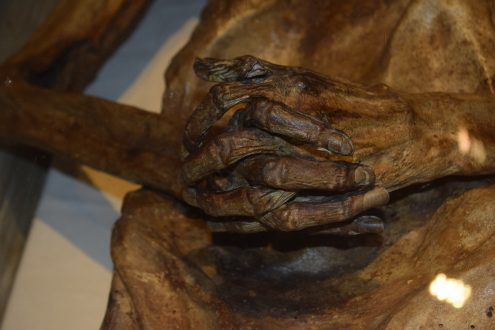 Haende der Mumie von Ritter Kahlbutz in Kampehl Havelland
