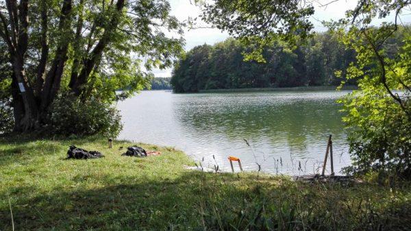 Picknick am Ufer des Kalksees, Lkr. Neuruppin in Brandenburg, mit Büschen und Bäumen