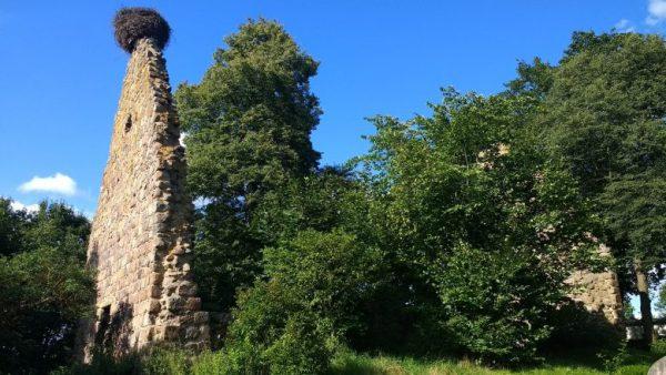 Einer der ungewöhnlichen : Kirchenruine Berkenlatten Lkr. Uckermark in Brandenburg mit einem Storchennest als guter Picknickplatz