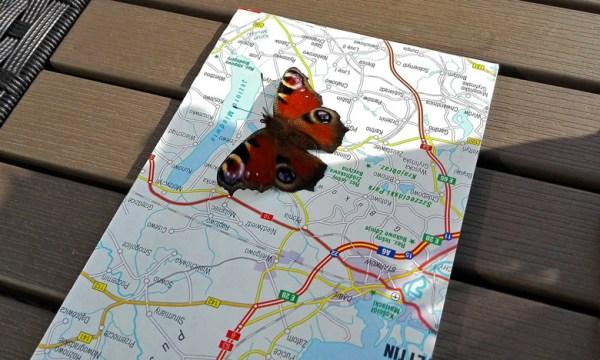 Motorrad-Tourenerfahrungen: Landkarte mit Schmetterling bei einer Marschpause auf einer Motorradtour