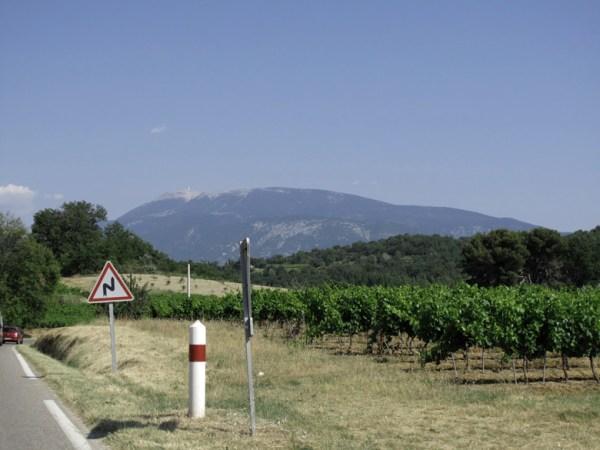 Fernblick auf den Mont Ventoux von einer kleinen Landstrasse aus mit einem Weingarten im Vordergrund und mediterranen Eichenhainen im Mittelgrund