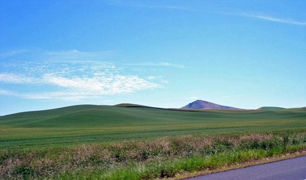 Grüne Hügel entlang der U.S. 195 in Washington State