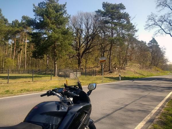 Parabeldüne bei Horstwalde (Brandenburg), gesehen bei einer Motorradtour zur Dahmequelle