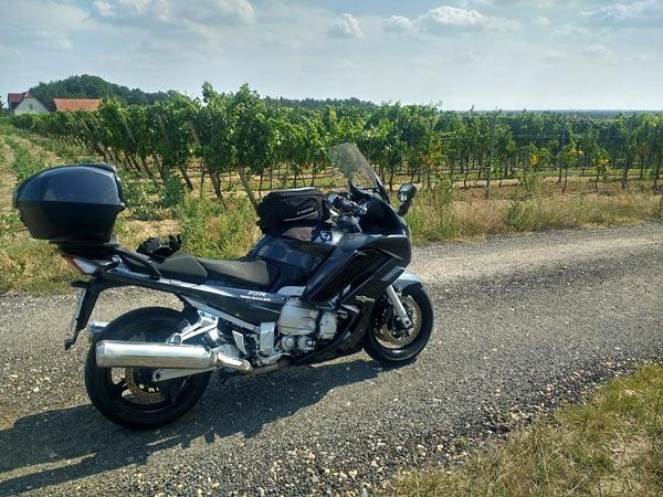 Motorrad in den Weinbergen von Jessen (Elster) in Sachsen-Anhalt