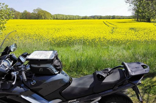 Schwarzes Motorrad vor einem gelb bluehenden Rapsfeld