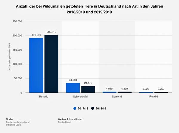 wildunfall mit dem motorrad ist ein grosses risiko: statistik der bei wildunfaellen getoeteten tiere in deutschland 2018/2019