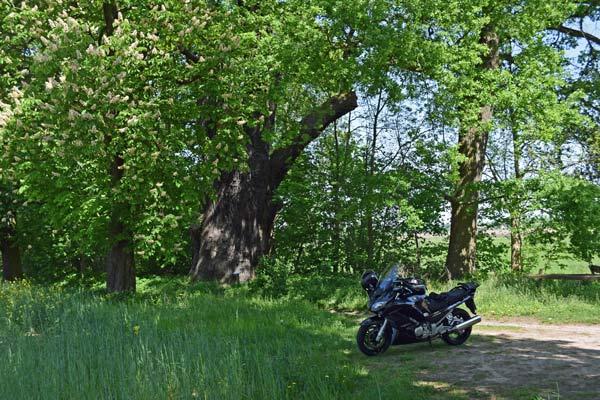 motorrad-kurzurlaub in ostdeutschland an den kruegersdorfer eichen
