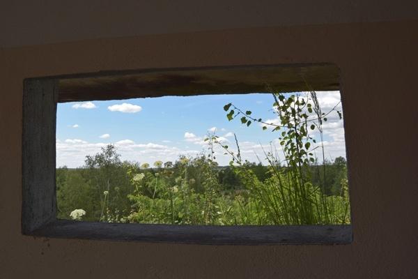 blick aus dem beobachtungsbunker auf dem generalshuegel in der lieberoser heide