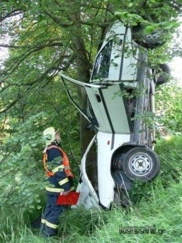 acidentes de carro - descendo da árvore