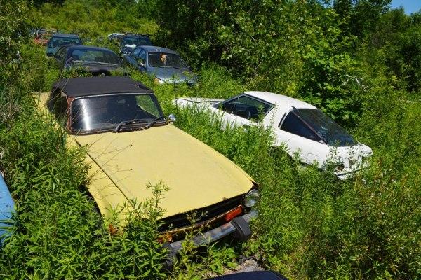 Muchos derramarán lágrimas al ver esta pareja de favoritos de cualquier feria de autos clásicos: un Triumph TR6 y un Mazda RX-7.