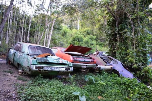 Motor show tesoros en el junker cementerio mopar en el centro de observen la variedad de colores imaginen lo bellos que se habrn visto cuando eran nuevos fandeluxe Choice Image