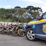 Leilão da PRF tem mais de 600 veículos apreendidos