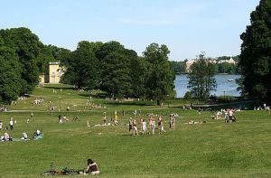 People enjoying a summer day in a grassy park with a lake and trees in the background.