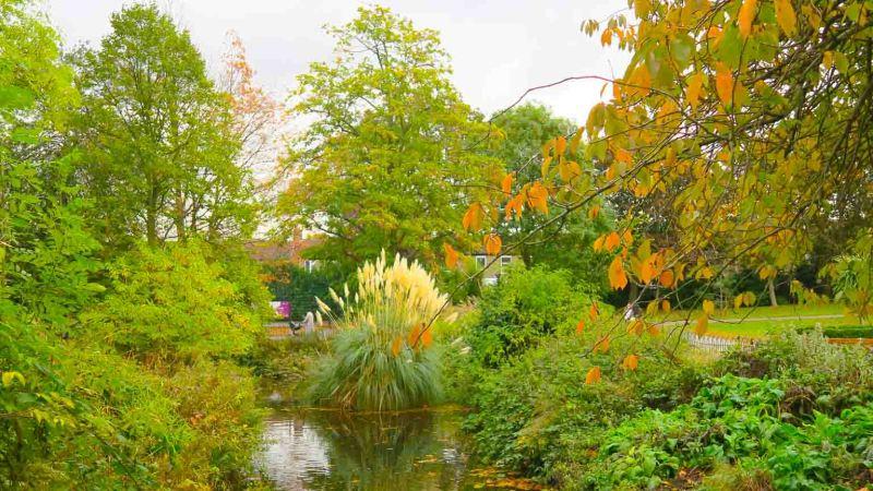 Stream behind William Morris Gallery in Walthamstow