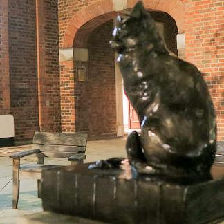 Hodge, a favourite cat of Dr. Samuel Johnson
