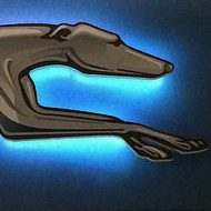 Greyhound with blue light in Edmonton