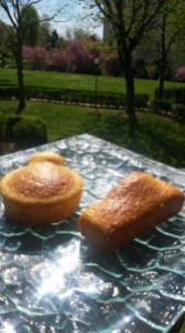 gâteaux à la vanille sans gras