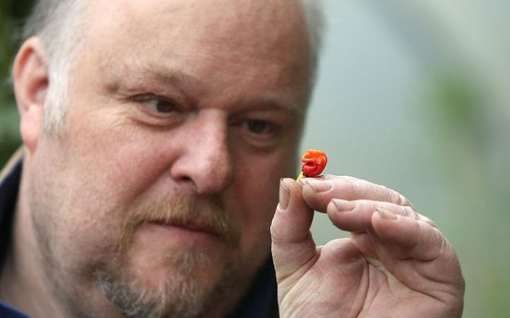 Hottest Chili Pepper in the World Accidentally Created by Welsh Farmer