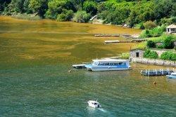Lago-Atitlan-muriendo-01