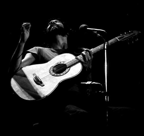 Cat Stevens (Yusuf Islam)