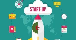 لماذا تتعثر الشركات الناشئة Startups في الجزائر