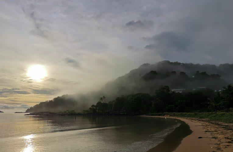 Outils de formalisation de l'activité informelle en Guyane