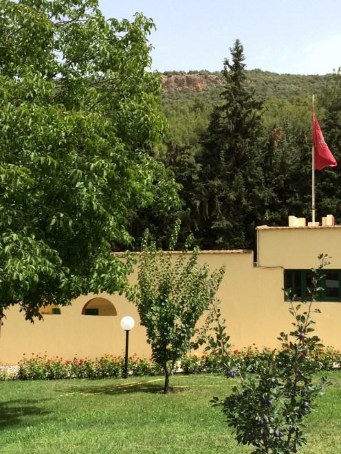 Les montagnes à l'entrée de la résidence