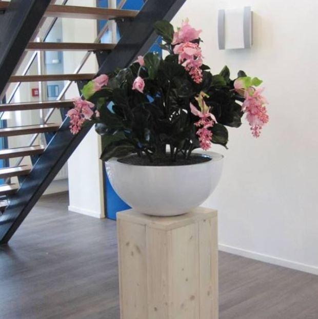 Medinella kunstplant