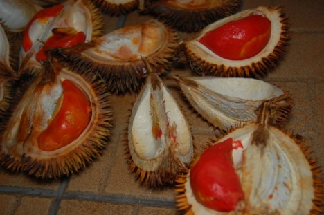 The left durian is slightly orange-pink in colour.