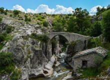Mariovo Region And Black River Canyon