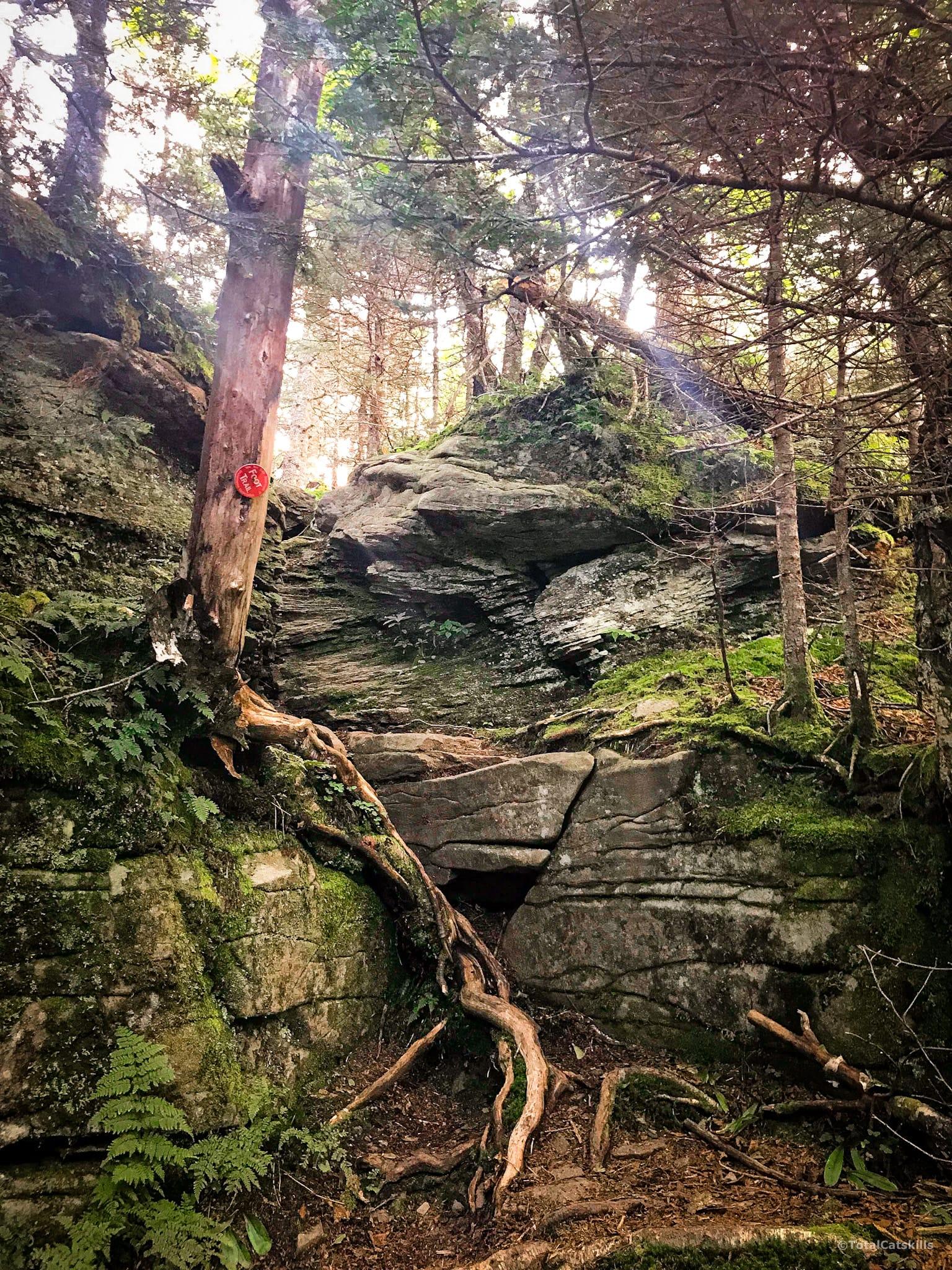 rock chute