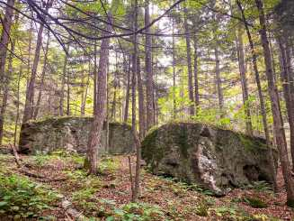 Boulders in West Kill's Mink Hollow