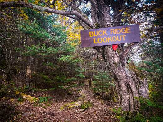 Buck Ridge Lookout Signpost