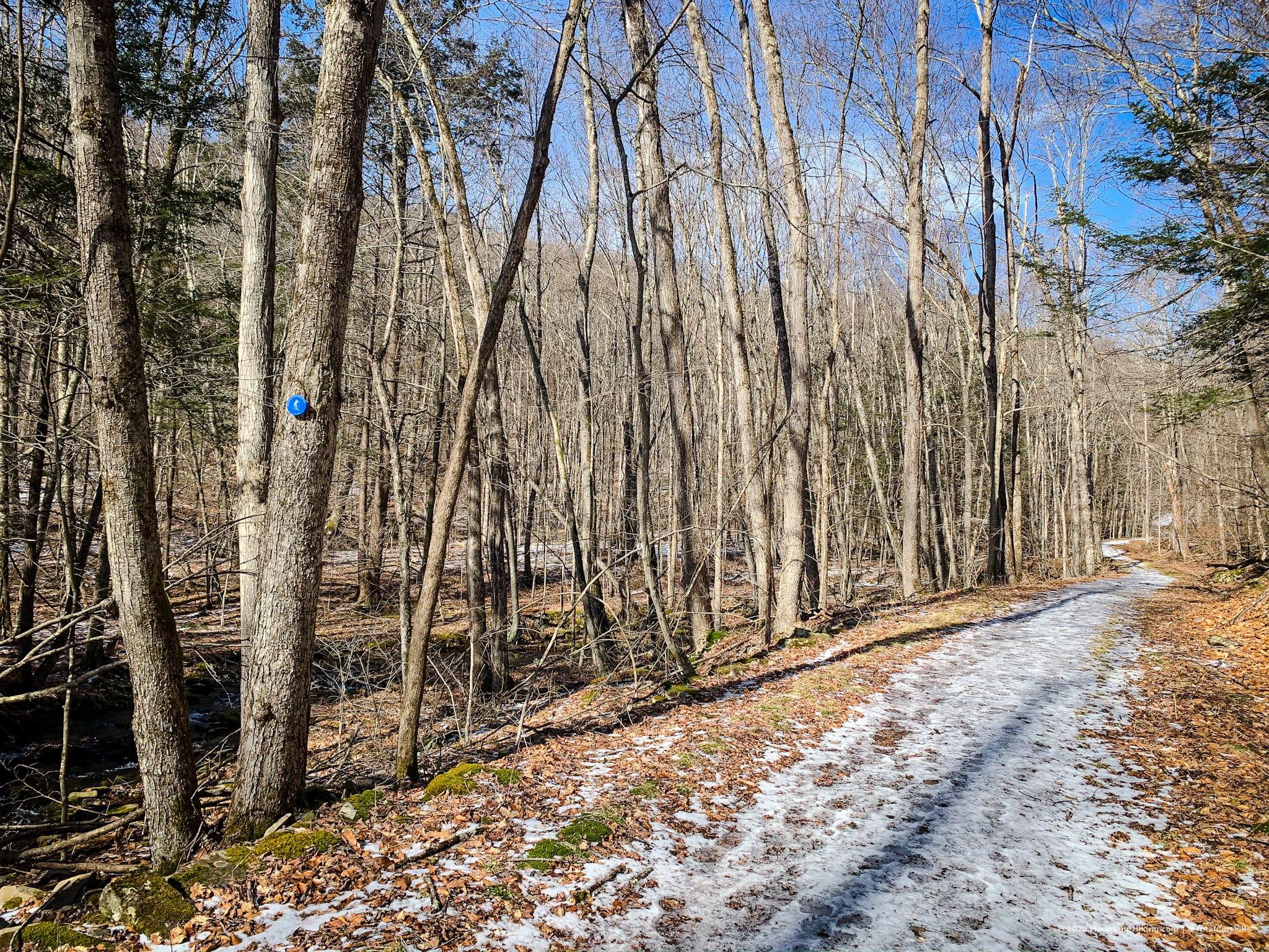 catskills trail