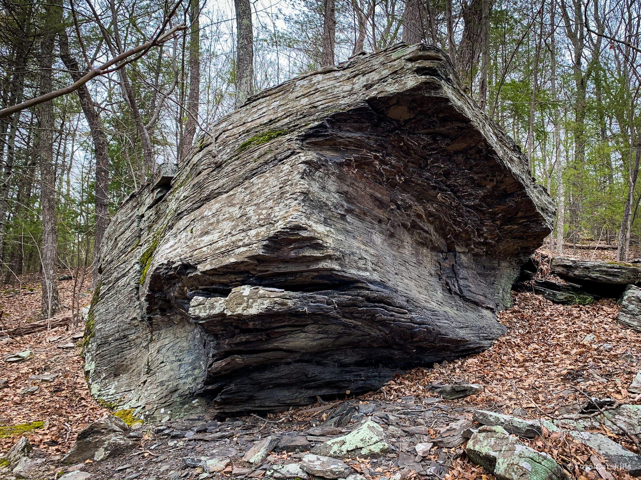 boulder, trees