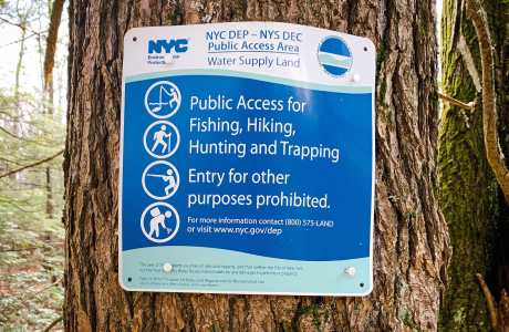 sign with warnings on tree