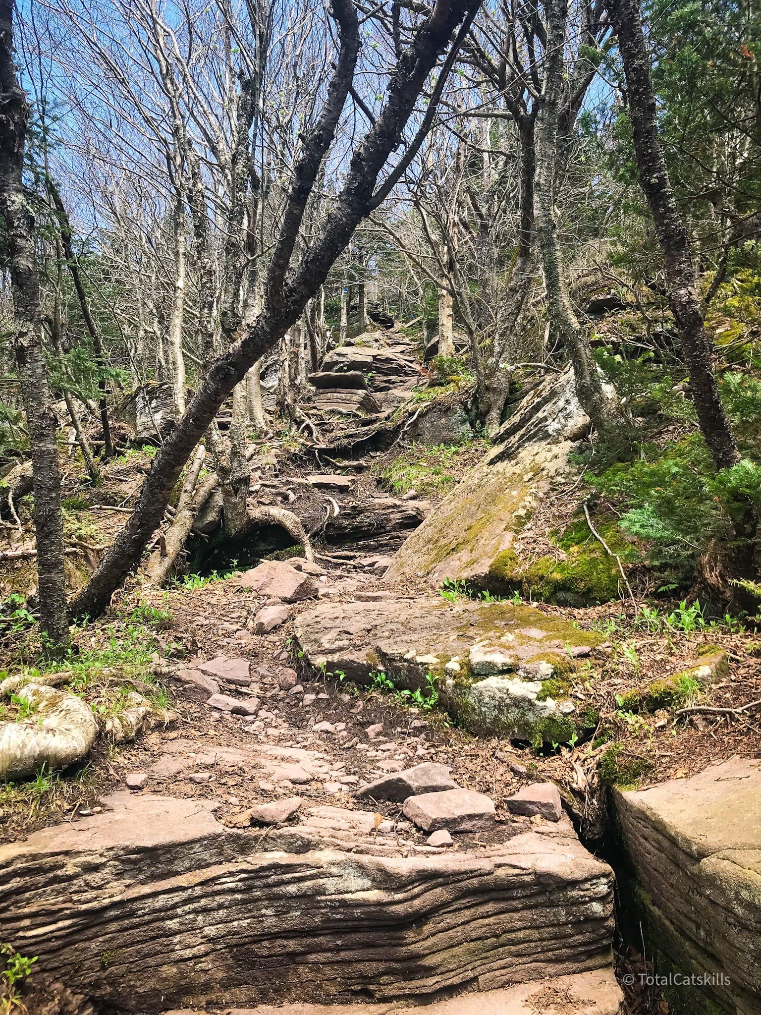 rugged mountain trail