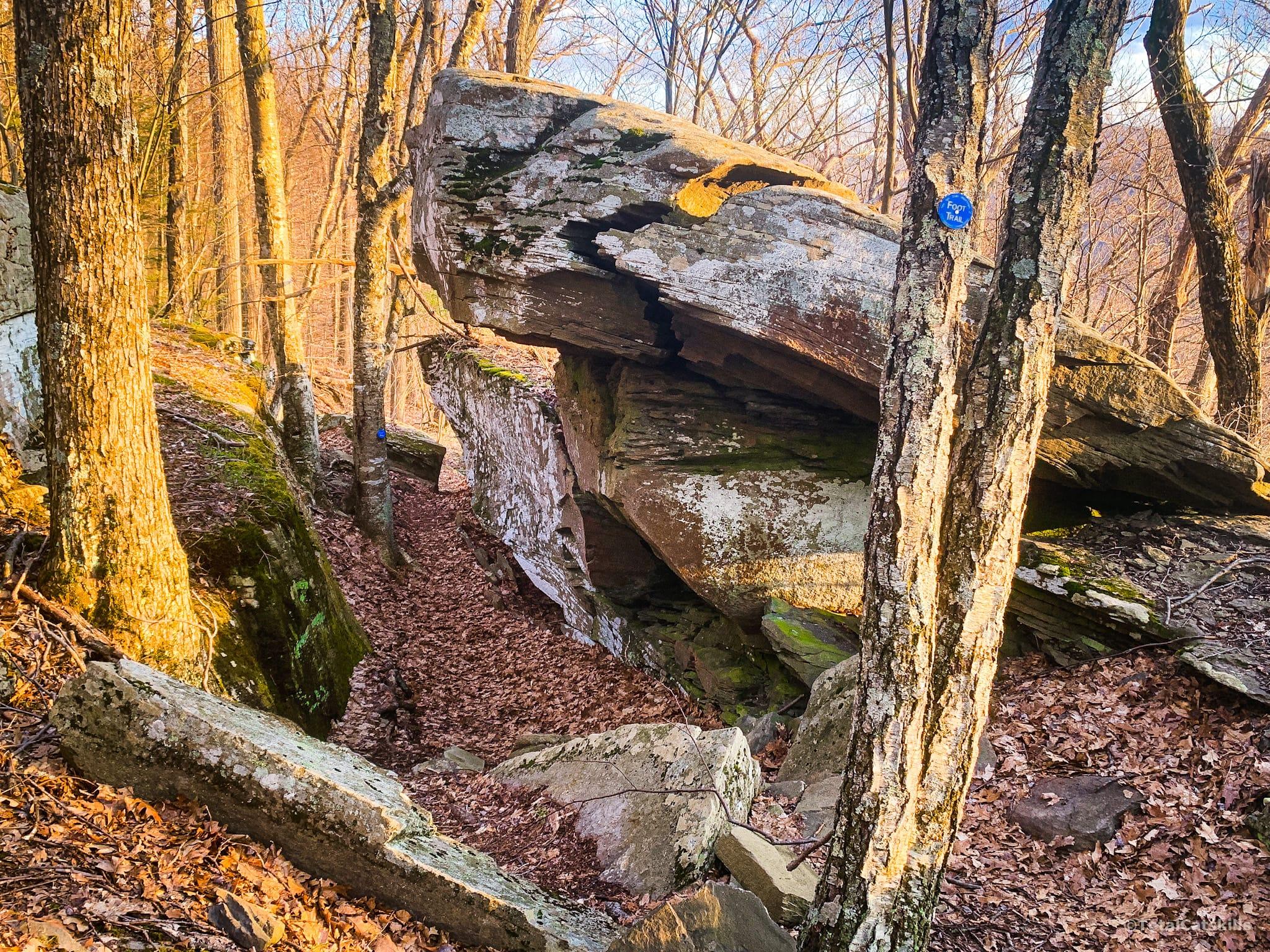 rocky channel in woods