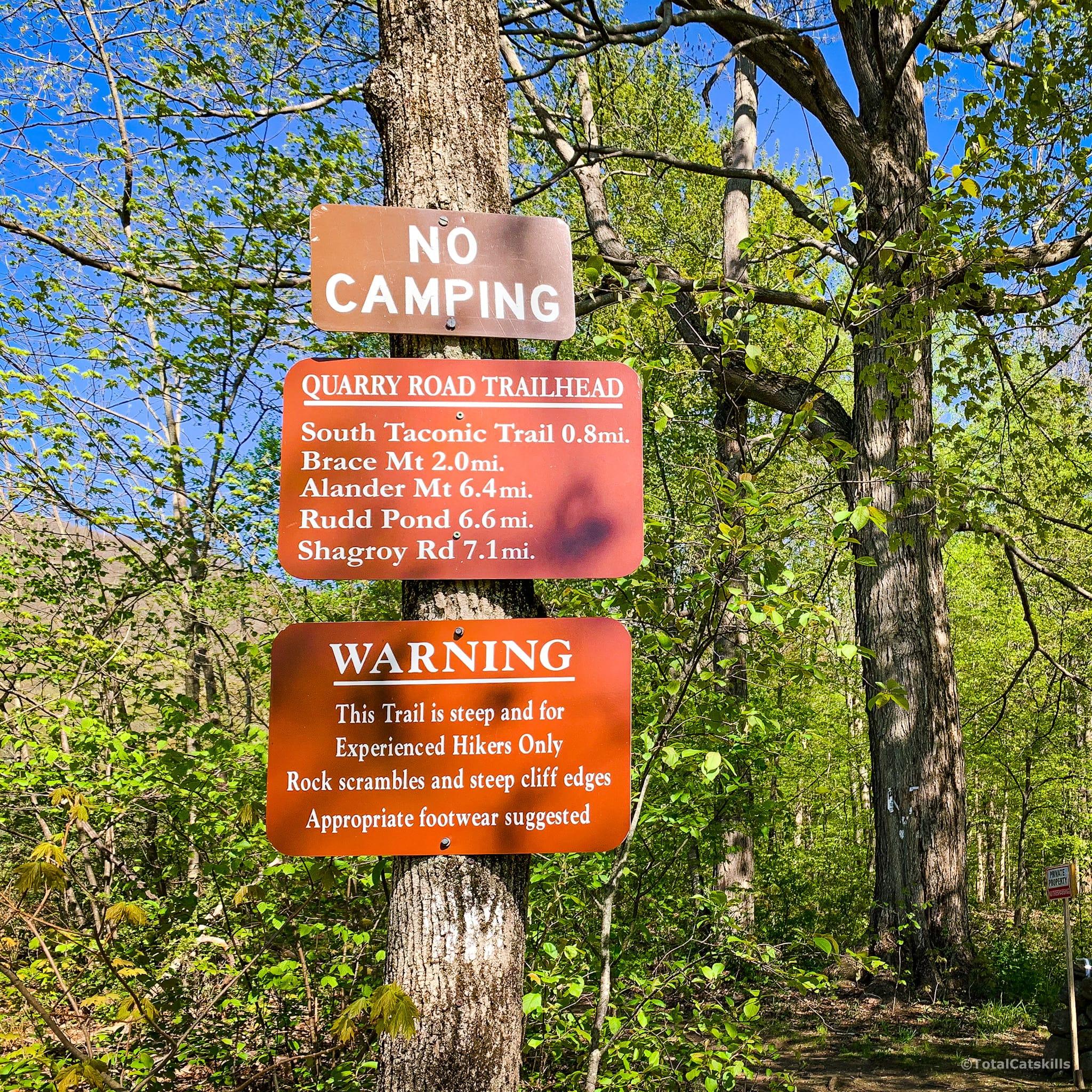signs on tree