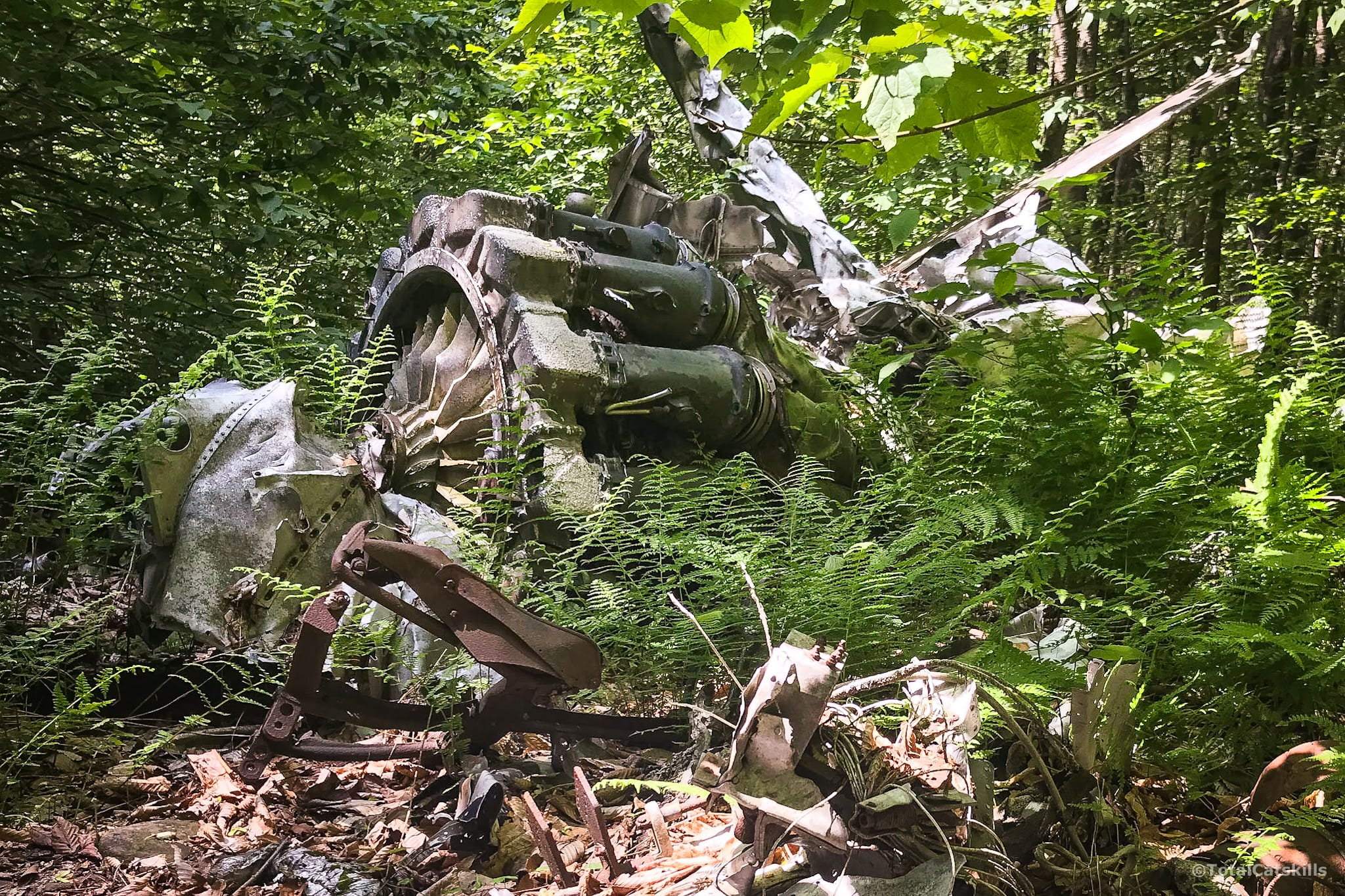 jet engine wrecked in forest