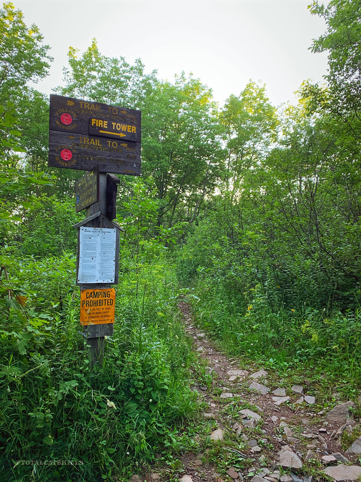 trail signs on overlook mountain trail