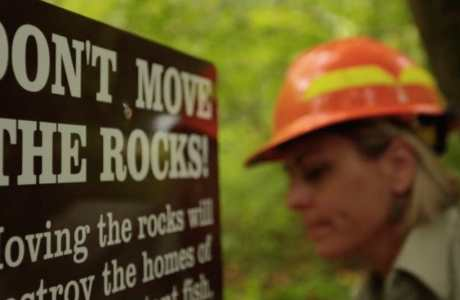 sign and forest worker