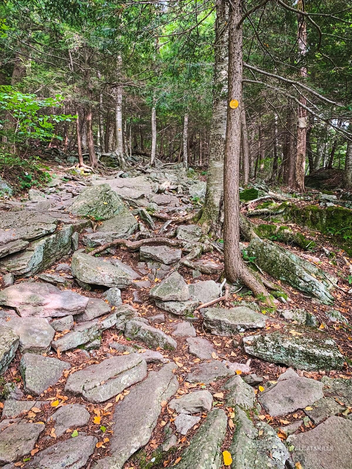 rugged rocky trail